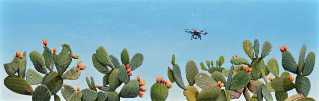 Θεωδορόπουλος Στάθης, The drone