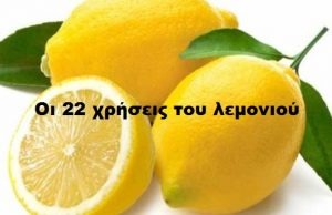 lemons 537x350