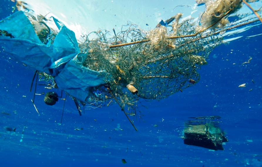 Ένζυμο τρέφεται με πλαστικό