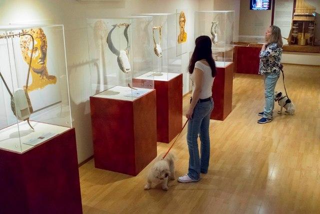2. 'Ενα pet friendly Μουσείο στην Αθήνα