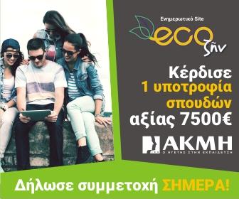 ecozen 336x280
