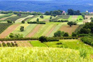 εκτενές αγροτικό τοπίο 41786380