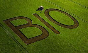 bio landwirtschaft orig