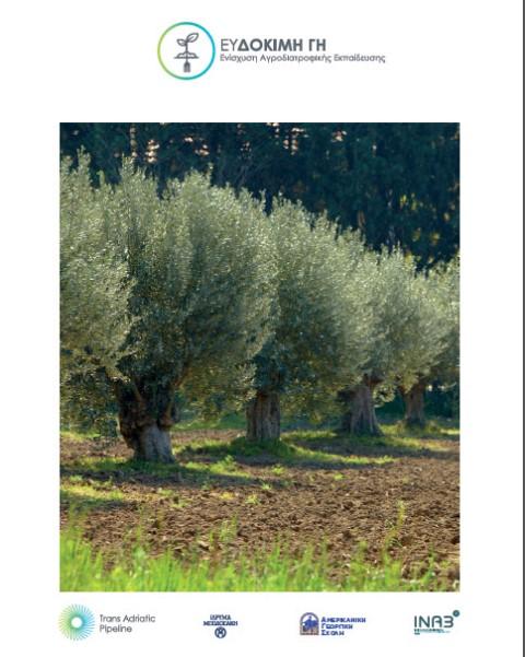 5. Thriving Land brochure GR