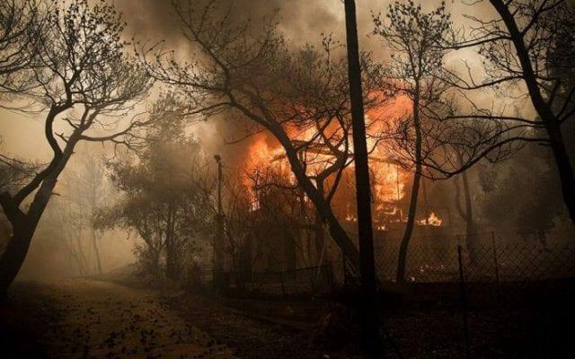 δασική πυρκαγιά, φωτιά