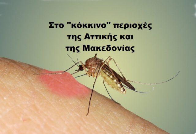 Mosquito biting swellMarco Uliana 1