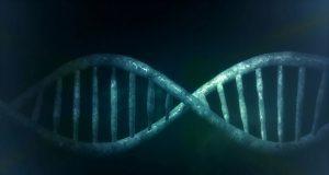 προγεννητική γονιδιακή επέμβαση