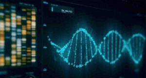 DNA algorithm