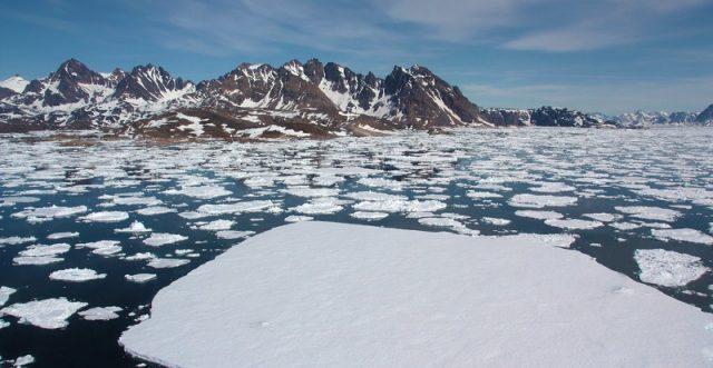Arctic sea ice loss