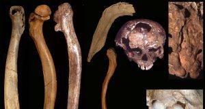 Pleistocene people1