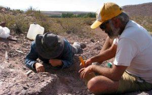 Spanish and Argentine paleontologists