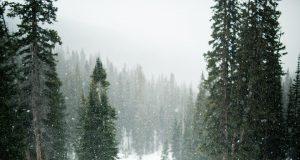 snow 1246175 960 720