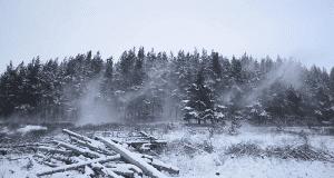 wind & snow