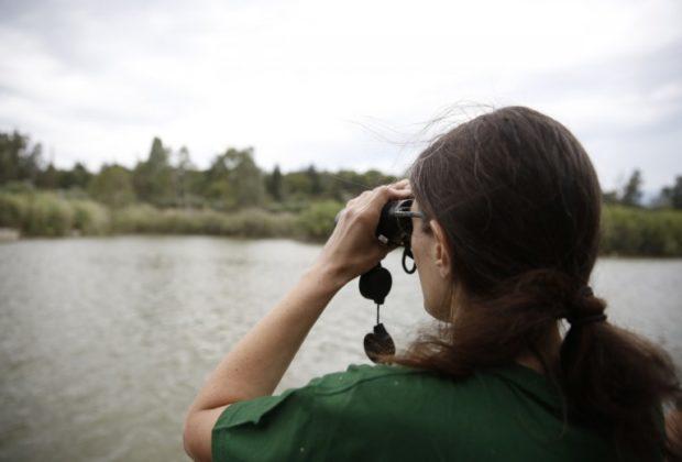 Προστατευόμενες Περιοχές, natura20000