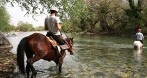 θεματικός τουρισμός, άλογο