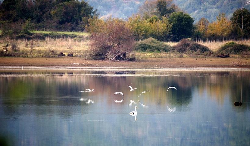 φορείς διαχείρισης Natura