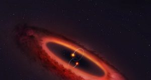 double star system and surrounding disc