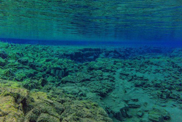 underwater 3237936 960 720
