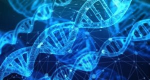 DNA Network Research Chemistry Medical Biology