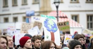 Fridays For Future 1