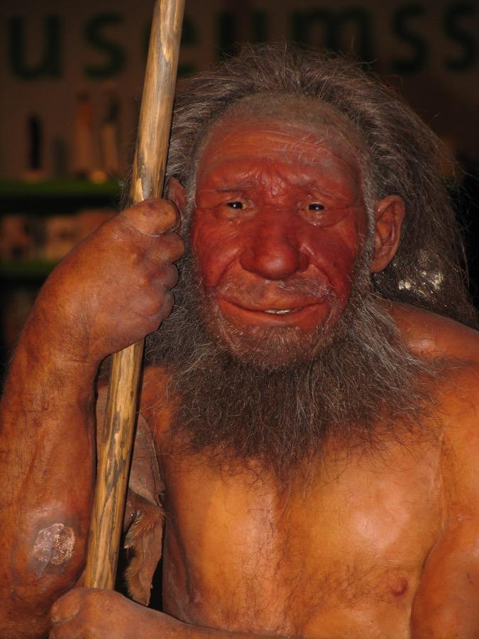Neandertaler reconst