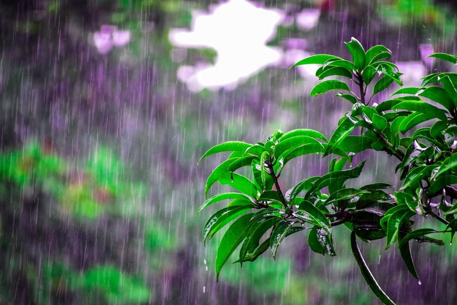 καιρός βροχή φύση