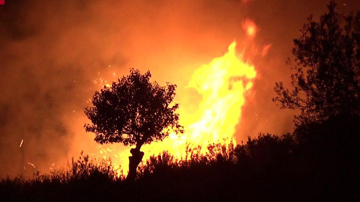 RescEU: Ενισχύονται τα μέτρα της ΕΕ για τις δασικές πυρκαγιές