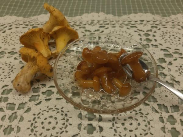 Γλυκό μανιτάρι: ντελικάτη γεύση με μοναδικό άρωμα μαστίχας Χίου