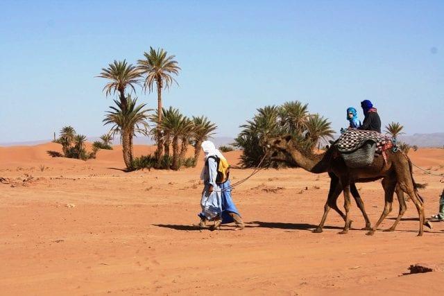 οάσεις, έρημος