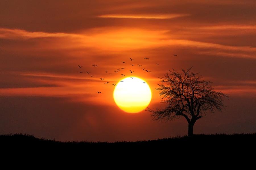 Θερινό ηλιοστάσιο