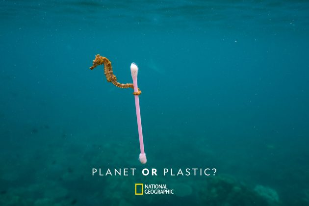 National Geographic Planet or Plastic? 4