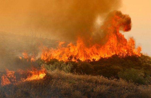 Φωτιά σε δύσβατη περιοχή στη Μεγαλόπολη