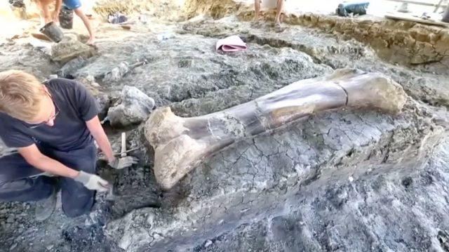 Γιγάντιο οστό δεινοσαύρου βρέθηκε στη νοτιοδυτική Γαλλία