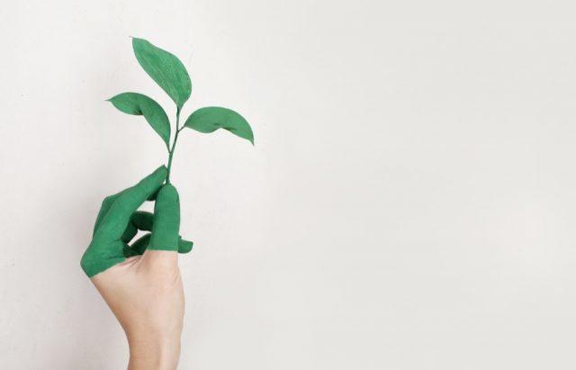 βιώσιμη ανάπτυξη