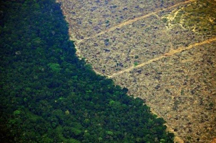 AMAZONIOS6