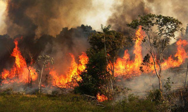 Αμαζόνιος πυρκαγιά