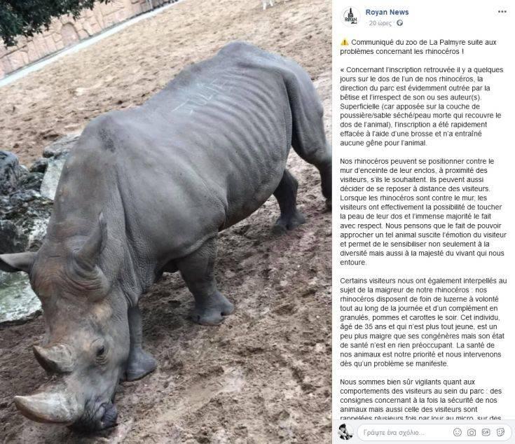 Γάλλοι χάραξαν το όνομά τους… σε ρινόκερο