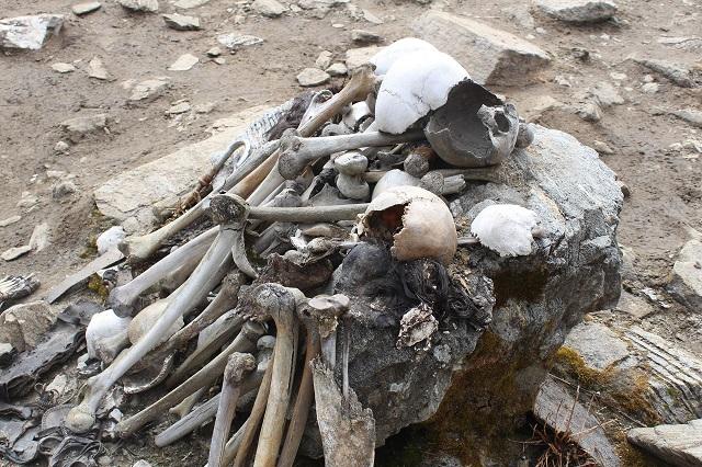 skeletoi 2