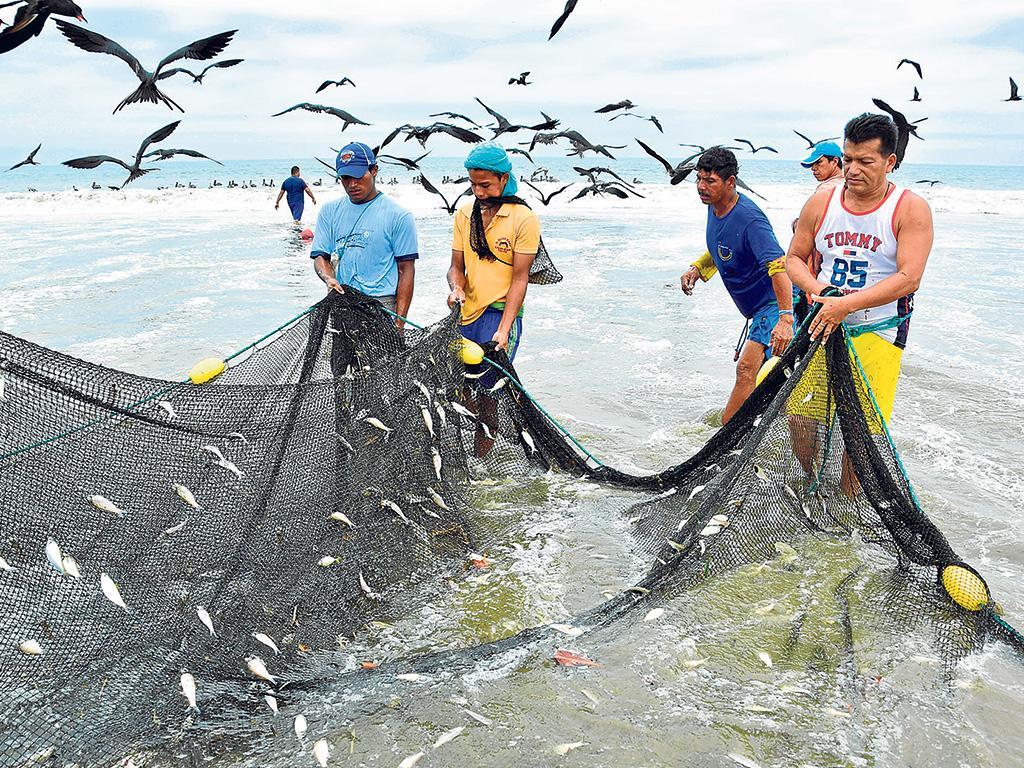 20180416110000 contaminacia n impide la pesca