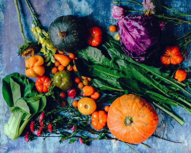 variety of vegetables 1458694
