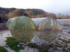 Κακοκαιρία Βικτώρια: Σοβαρές ζημιές στις θερμοκηπιακές εγκαταστάσεις στα Χανιά
