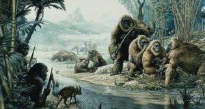 Gigantopithecus blacki 2
