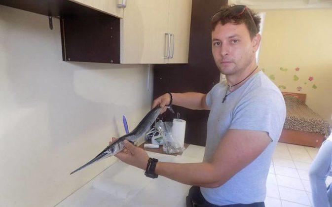 Ψαράς βρήκε δεκάδες τοξικούς λαγοκέφαλους μέσα σε ζαργάνα