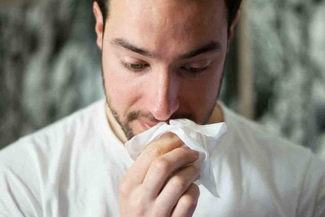 Αισθήσεις, Γεύση, Όσφρηση