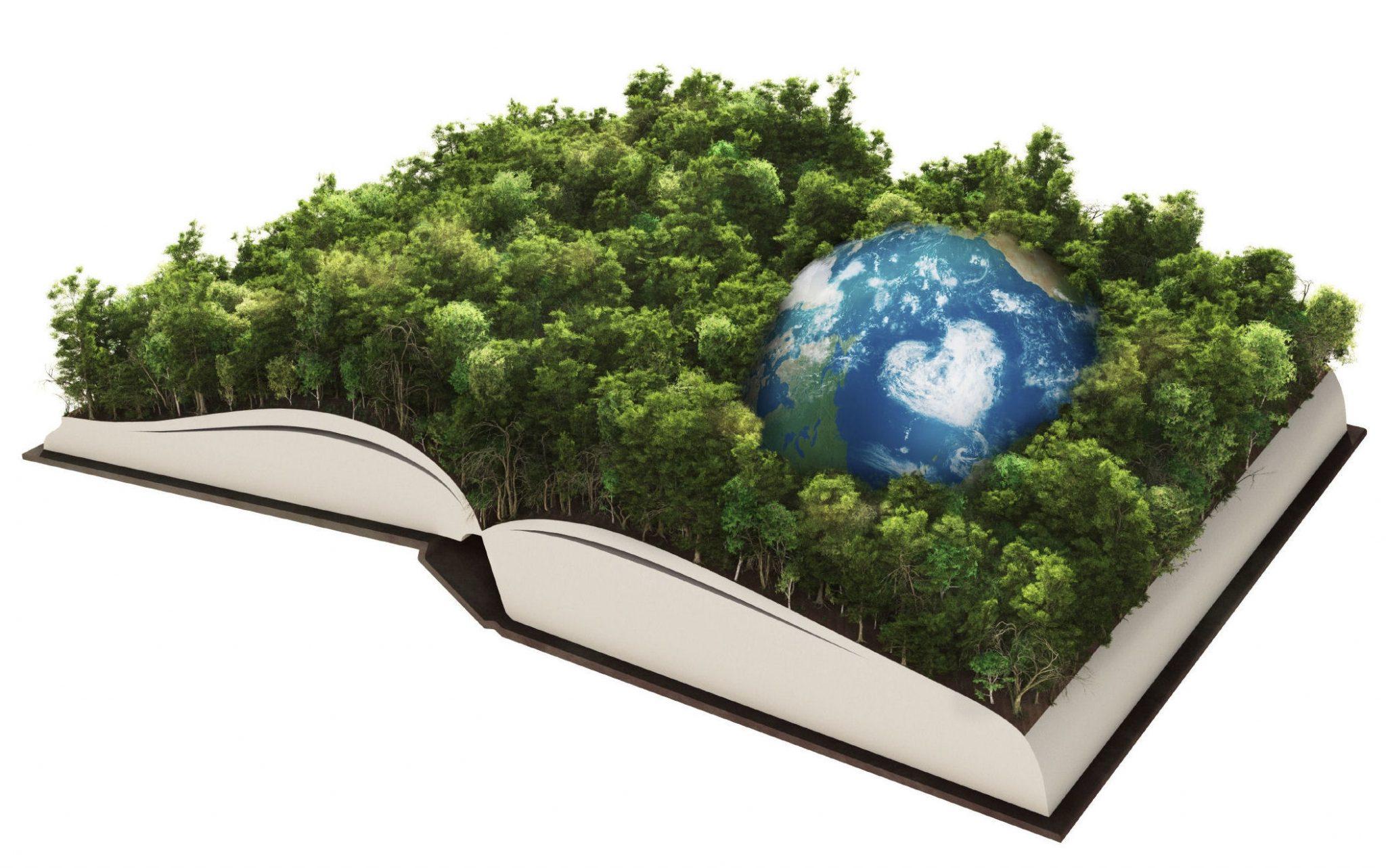 Κίνημα Αλλαγής: Διαδικτυακή εκδήλωση για το περιβάλλον
