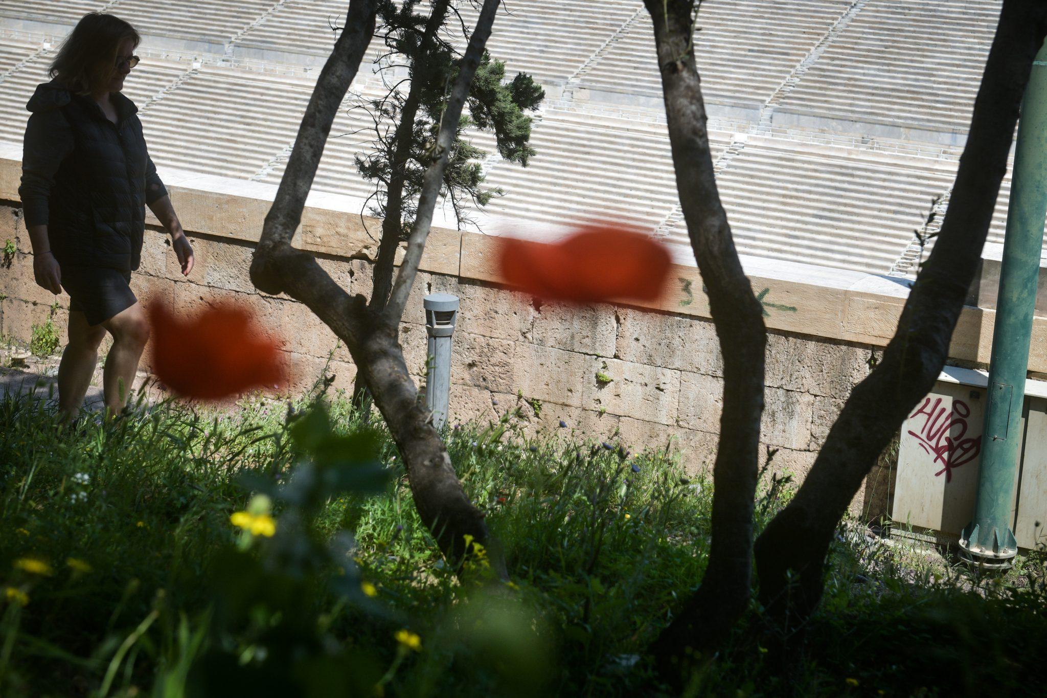 Αθήνα: 8.500 νέα λουλούδια και φυτά στην πρωτεύουσα