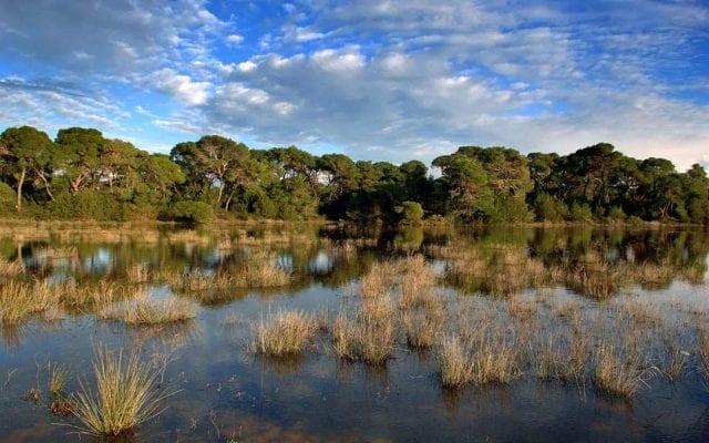 Natura - Περιβάλλον