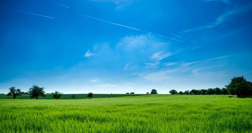 Ἡμέρα περιβάλλοντος μέσα σέ οἰκολογική καταστροφή