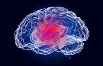 Forbes Brain damage