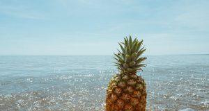 pineapple supply co SWfcRVm o0E unsplash